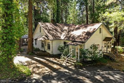 Nevada City Single Family Home For Sale: 10401 Park Avenue Extension