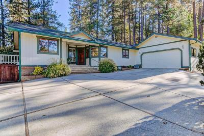 Nevada County Single Family Home For Sale: 11385 Francis Drive