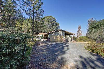 Auburn Single Family Home For Sale: 5245 Cedar Ridge Drive