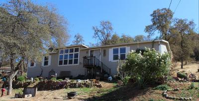 Nevada County Single Family Home For Sale: 23331 Saint Helena Drive