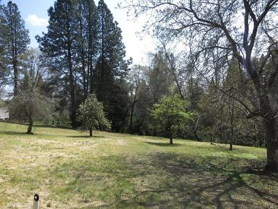 Grass Valley Residential Lots & Land For Sale: 200 Collins Lane