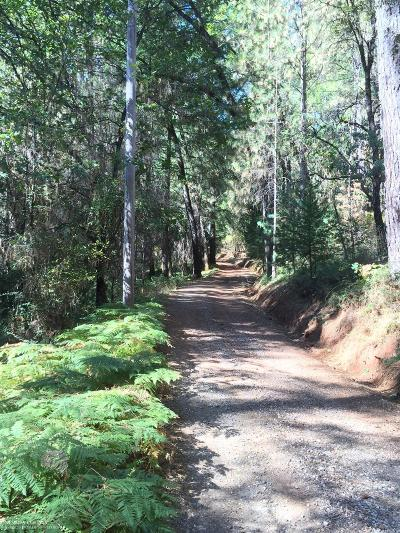 Grass Valley Residential Lots & Land For Sale: 20739 You Bet Road