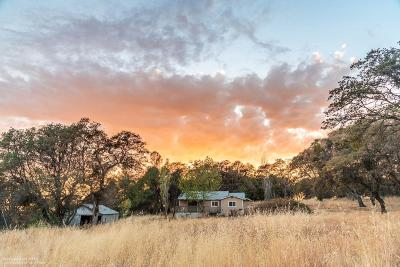 Grass Valley Single Family Home For Sale: 11822 Still Road