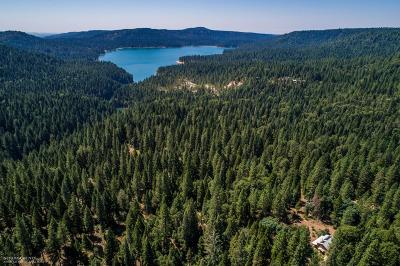 Nevada County Residential Lots & Land For Sale: 12309 Casci Road