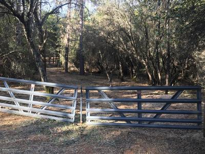 Grass Valley Residential Lots & Land For Sale: 20922 Spring Ranches Road