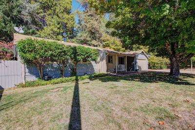 Grass Valley Single Family Home For Sale: 10678 Dolores Drive