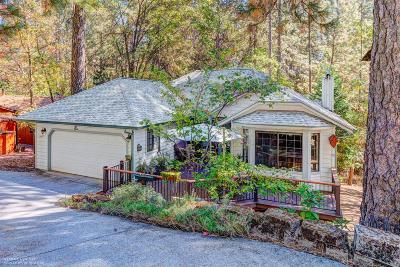Grass Valley Single Family Home For Sale: 10899 Henson Way