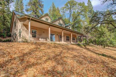 Nevada City Single Family Home For Sale: 20222 New Rome Road