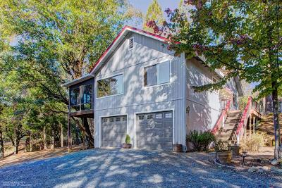 Grass Valley Single Family Home For Sale: 15590 Poverty Pond Road