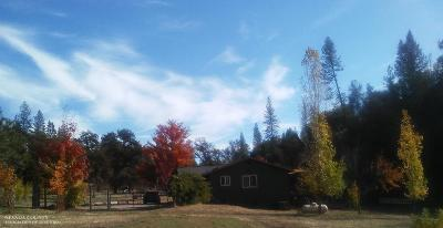 Nevada County Single Family Home For Sale: 17460 Dog Bar Road
