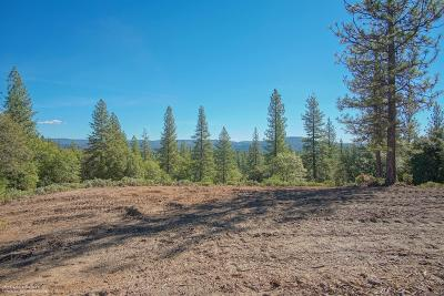 Grass Valley Residential Lots & Land For Sale: 18580 You Bet Road