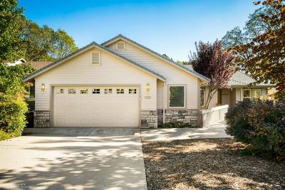 Grass Valley Single Family Home For Sale: 240 Horizon Circle