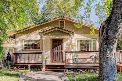 Nevada City Single Family Home For Sale: 306 American Hill Road