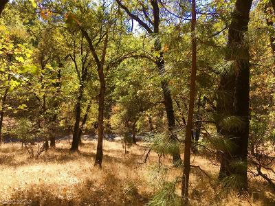 Grass Valley Residential Lots & Land For Sale: 19680 Wolf Creek Road