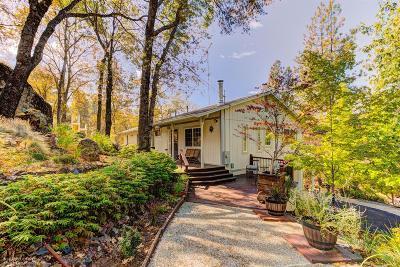 Grass Valley Single Family Home For Sale: 17680 Penny Court