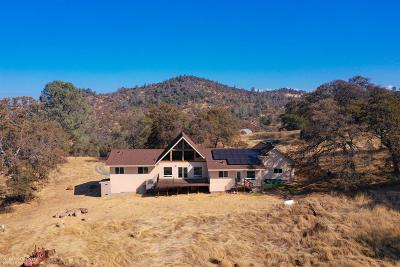 Grass Valley Single Family Home For Sale: 21331 Perimeter Road