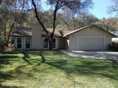 Nevada County Single Family Home For Sale: 14182 Torrey Pines Drive
