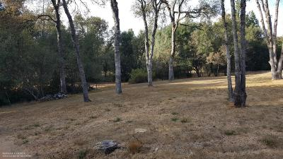 Penn Valley Residential Lots & Land For Sale: 10140 Valley Oak Court