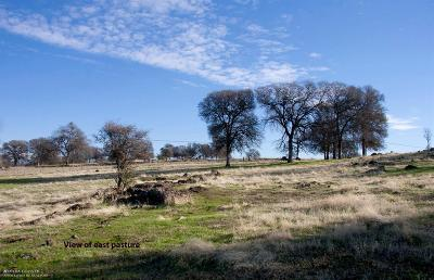 Grass Valley Residential Lots & Land For Sale: 17984 Perimeter Road