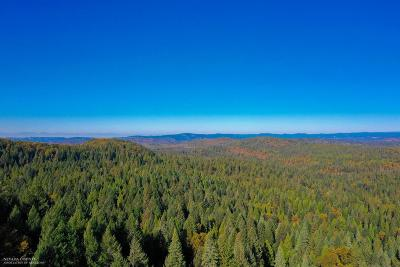 Nevada County Residential Lots & Land For Sale: 17718 Broken Arrow Place