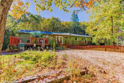 Nevada City Single Family Home For Sale: 18590 Oak Tree Road