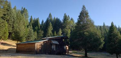 Nevada City Single Family Home For Sale: 11282 New York Canyon Road