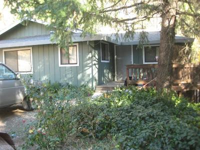 Nevada City Single Family Home For Sale: 19229 State Highway 49 Highway