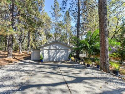Grass Valley Single Family Home For Sale: 16815 Alioto Drive
