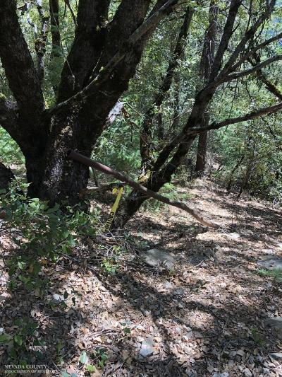 Nevada County Residential Lots & Land For Sale: 18057 Gaston Road