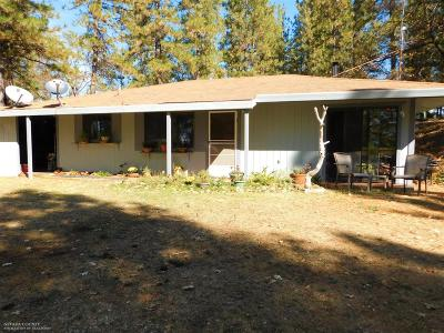 Nevada City Single Family Home For Sale: 10576 Newtown Road
