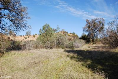 Smartsville Residential Lots & Land For Sale: State Hwy 20 Highway