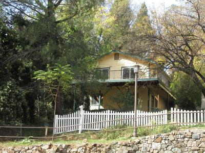 Nevada County Single Family Home For Sale: 338 Mill Street