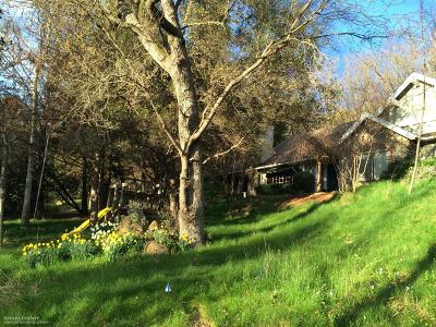 Nevada County Single Family Home For Sale: 17045 Round Valley Circle