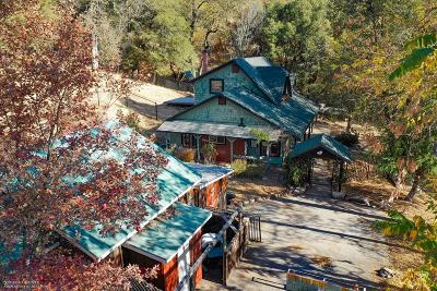 Nevada County Single Family Home For Sale: 12426 Rainbow Road