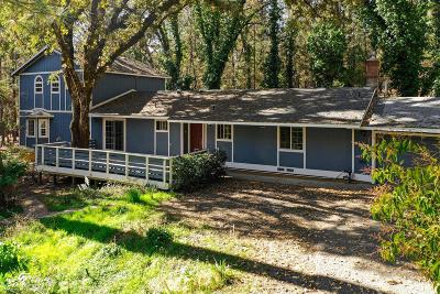 Nevada County Single Family Home For Sale: 10442 Mountain Lion Lane