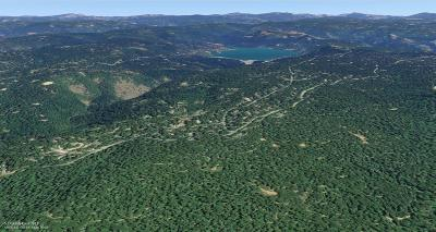 Nevada County Residential Lots & Land For Sale: 12765 Red Dog Road