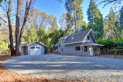 Nevada County Single Family Home For Sale: 11011 Brunswick Drive