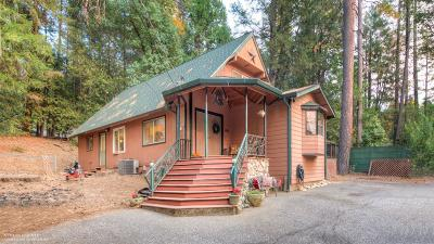 Nevada County Single Family Home For Sale: 12953 Gaston Drive