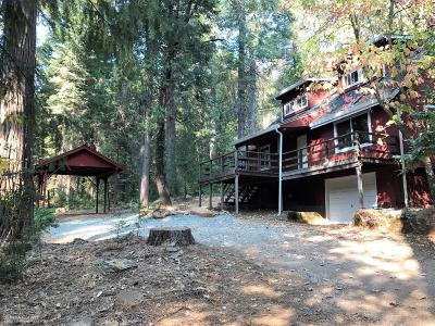 Nevada County Single Family Home For Sale: 13860 Winding Way Way