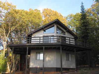 Nevada County Single Family Home For Sale: 14520 Lightning Tree Road