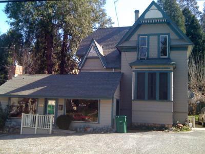 Grass Valley Multi Family Home For Sale: 429 S Auburn Street