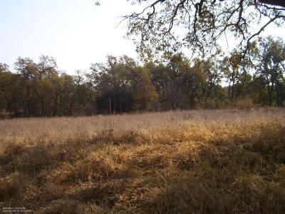 Penn Valley Residential Lots & Land For Sale: 17238 Carrie Ann Lane