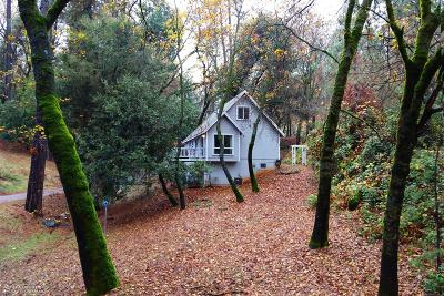 Grass Valley Single Family Home For Sale: 21294 Leslie Drive