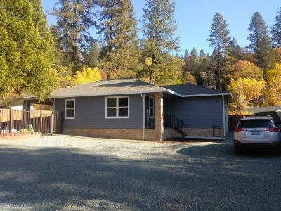 Grass Valley Single Family Home For Sale: 311 Hazel Lane