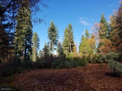 Nevada City CA Residential Lots & Land For Sale: $229,000