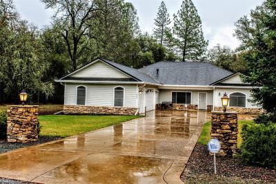 Penn Valley Single Family Home For Sale: 10205 Valley Oak Court