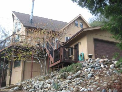 Nevada County Single Family Home For Sale: 16548 Annie Drive