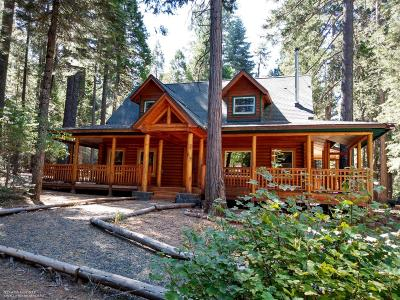 Nevada City Single Family Home For Sale: 22331 State 20 Highway