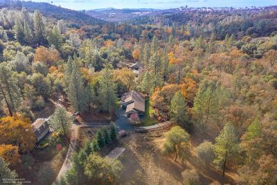 Nevada County Single Family Home For Sale: 15576 Oak Meadow Road