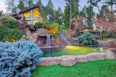 Grass Valley Single Family Home For Sale: 17615 Rollins View Drive